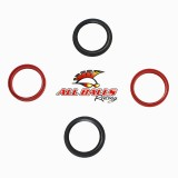 ALL BALLS FORK & DUST SEAL KIT